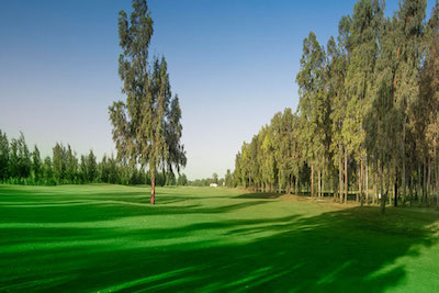 FEZ & MARRAKECH (Golf Tour -Two centres golf holidays) 1
